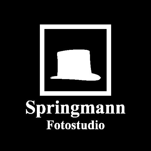 logo_v2_500_w